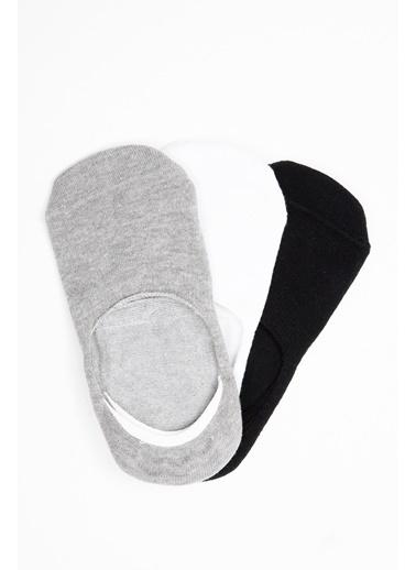 Avva 3'lü Çorap Gri